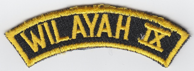 ID_041_Text_Patch_Wilayah_IX