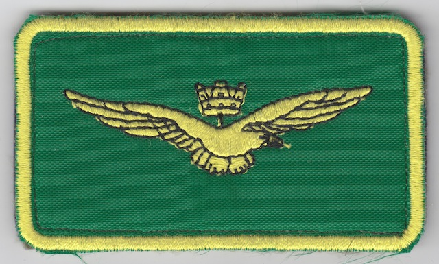 IT_048_Air__Marine_Customs_Service_Breast_Patch_Color_green