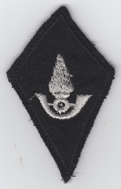 LB_001_Shoulder_Patch_current_Style